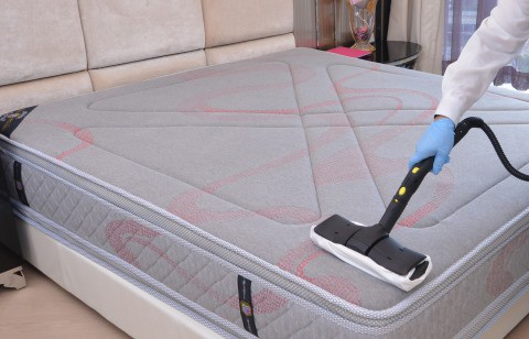 steam cleaner mattress